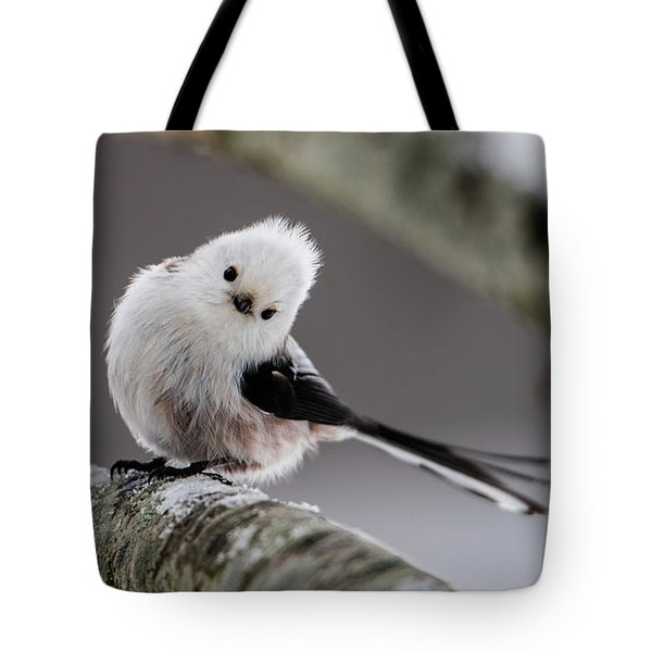 Long-tailed Look Tote Bag by Torbjorn Swenelius