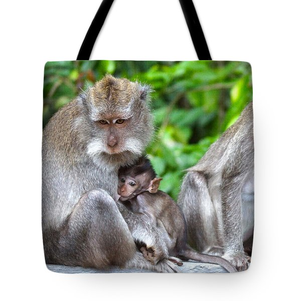 Long Tailed Macaques Tote Bag