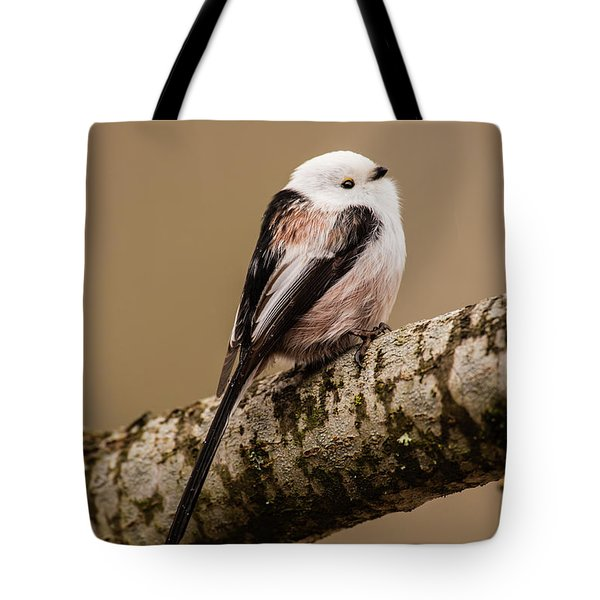 Long-tailed Tit On The Oak Branch Tote Bag