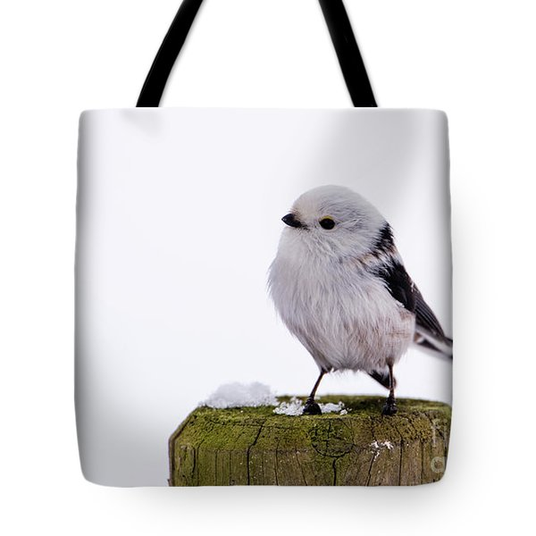 Tote Bag featuring the photograph Long-tailed Tit On The Pole by Torbjorn Swenelius