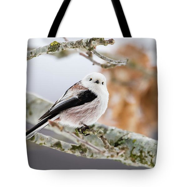 Tote Bag featuring the photograph Long-tailed Tit by Torbjorn Swenelius