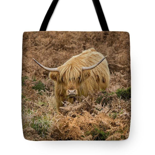 Longhorn On Dartmoor Tote Bag