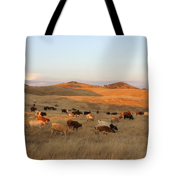 Longhorns Tote Bag by Diane Bohna