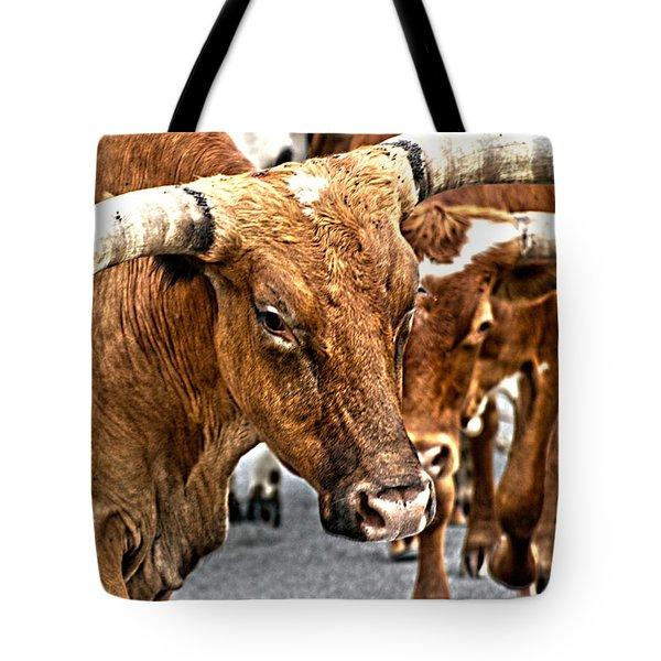 Longhorns Tote Bag by Toni Hopper
