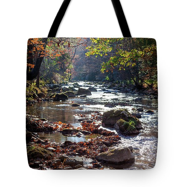 Longing For Home Tote Bag by Karen Wiles