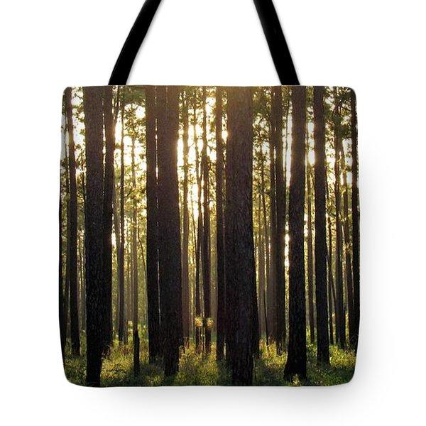 Longleaf Pine Forest Tote Bag