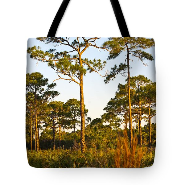 Longleaf Pines, Sunrise, Myakka State Forest Tote Bag