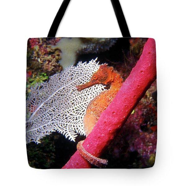Longsnout Seahorse, Roatan, Honduras Tote Bag