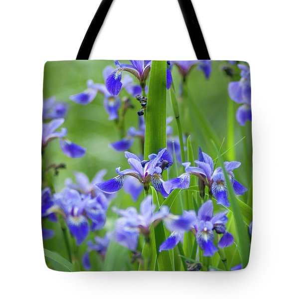 Longwood Garden Flowers Up Close Tote Bag