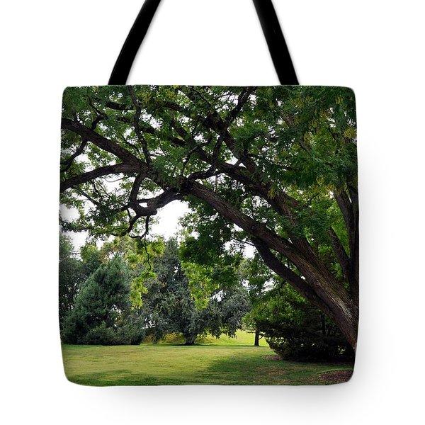 Longwood Gardens Tree Tote Bag