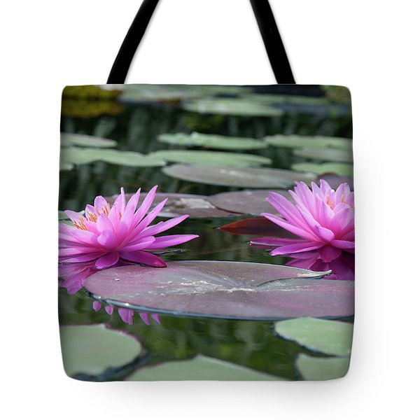 Longwood Gardens - Water Lillies - Chester County Pa Tote Bag