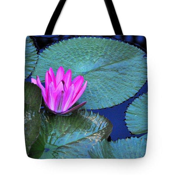 Longwood Gardens Water Lotus Tote Bag