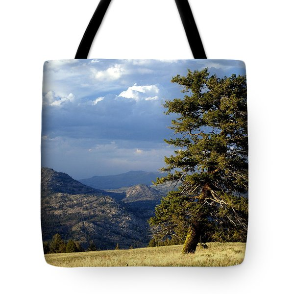 Lonly Tree Tote Bag by Marty Koch