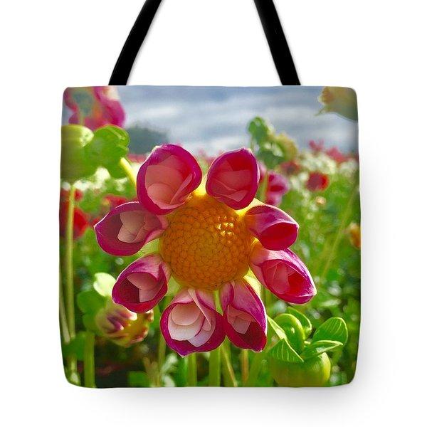Look At Me Dahlia Tote Bag by Susan Garren