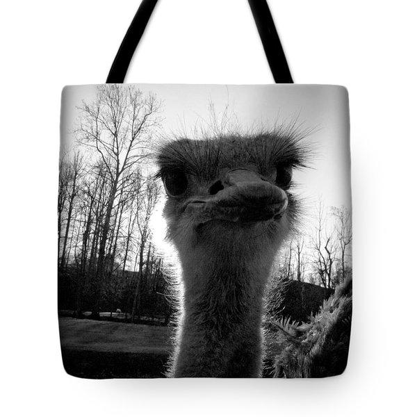 Look At Me Now Tote Bag