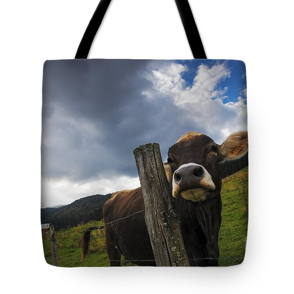 Tote Bag featuring the photograph Look At Me by Yuri Santin