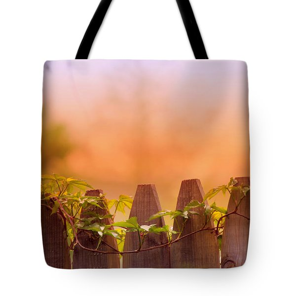 Look Beyond The Boundary Tote Bag by Rima Biswas