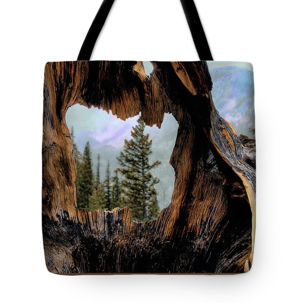 Look Into The Heart Tote Bag by Jim Hill
