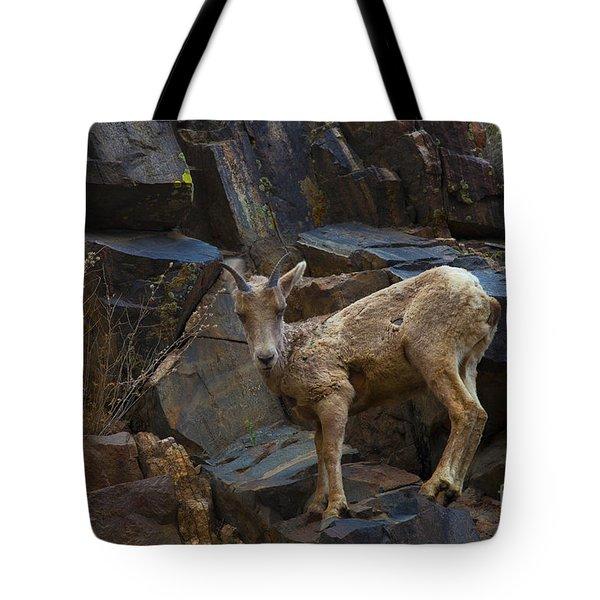 Look Mom Tote Bag