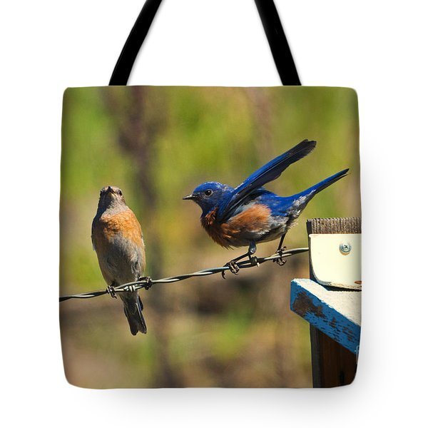 Look My Way Tote Bag by Mike Dawson