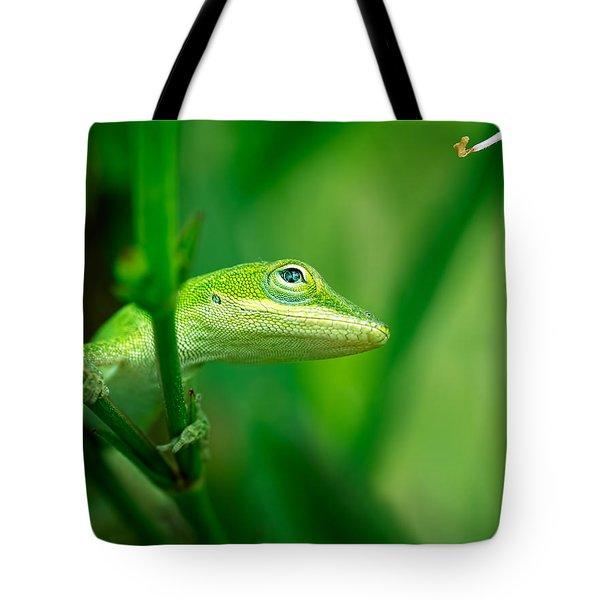 Look Up Lizard Tote Bag