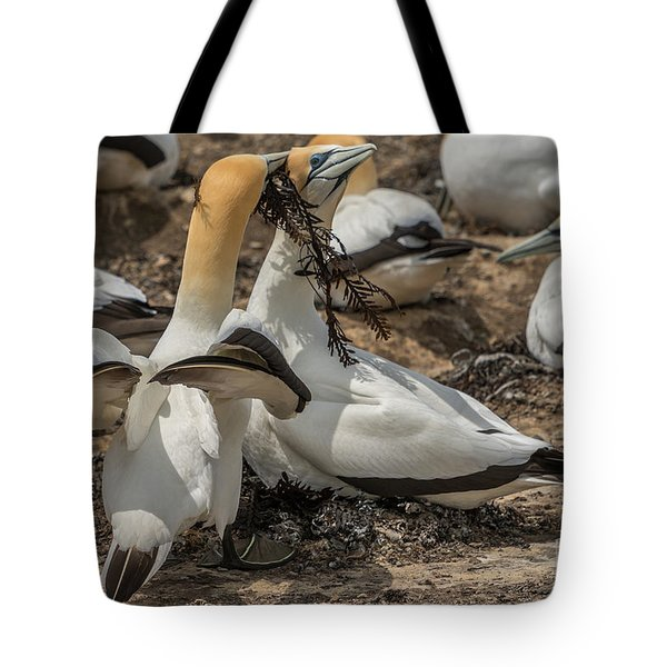 Look What I've Brought For You Tote Bag