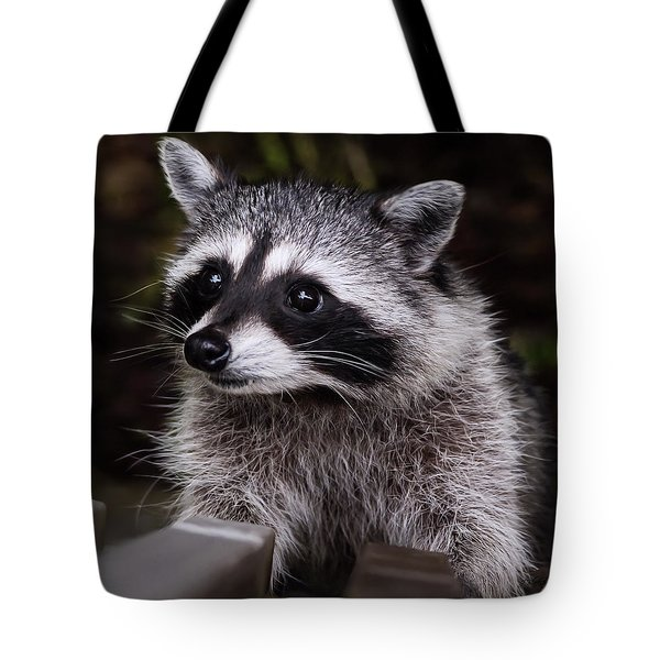 Tote Bag featuring the photograph Look Who Came For Dinner by Jordan Blackstone