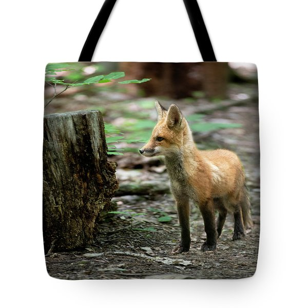 Looking Around On The Trail Tote Bag