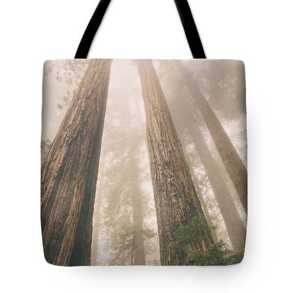 Looking At Giants Tote Bag