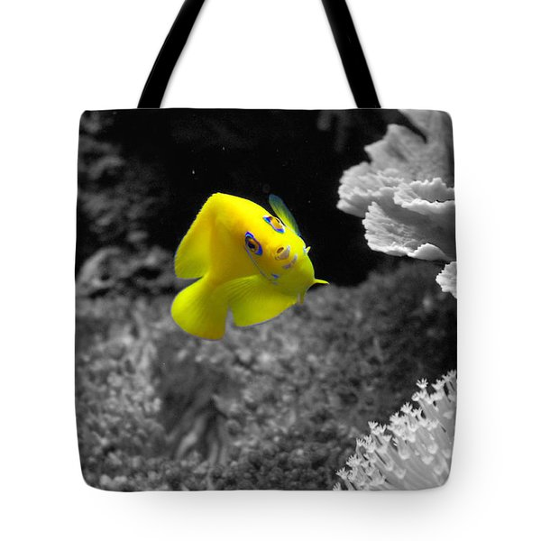Tote Bag featuring the photograph Looking At You by Deniece Platt