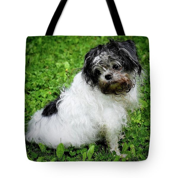 I Was Not In The Dirt Again.... Tote Bag