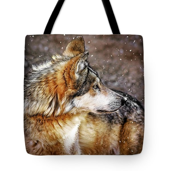 Tote Bag featuring the mixed media Looking Back by Elaine Malott