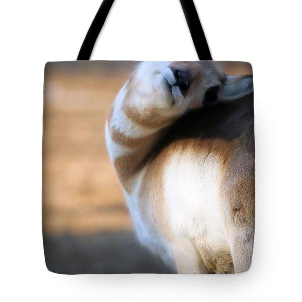 Looking Back Tote Bag by Karol Livote