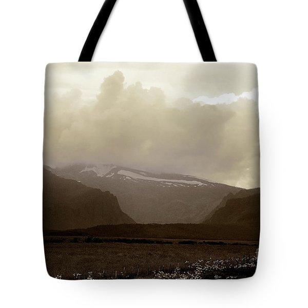 Looking Back Tote Bag