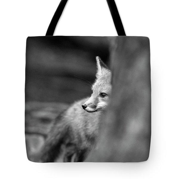 Tote Bag featuring the photograph Looking Behind A Tree by Dan Friend