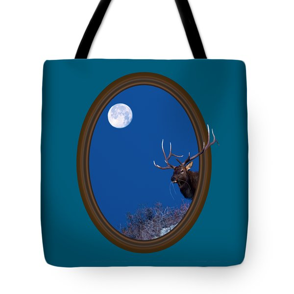 Looking Beyond Tote Bag