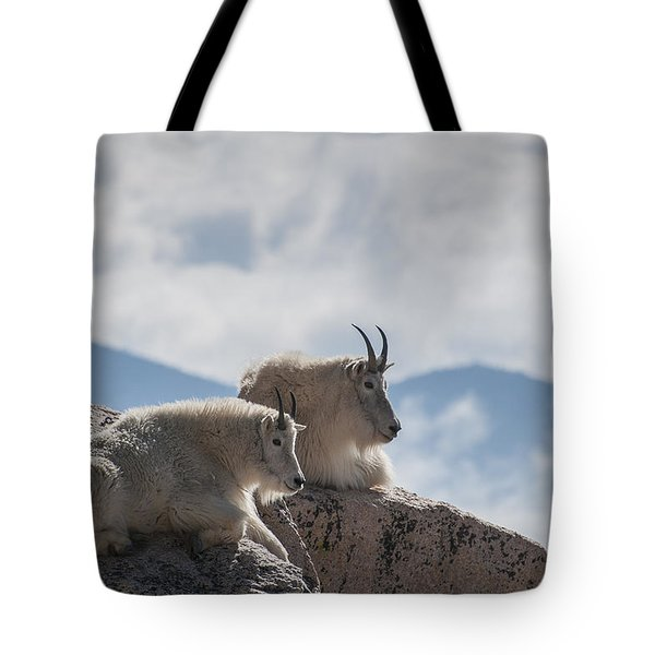 Looking Down On The World Tote Bag