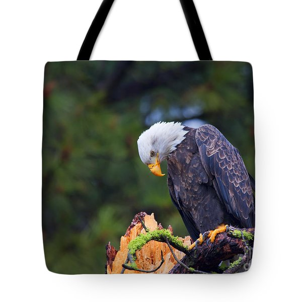 Looking Down On The World Tote Bag by Mike  Dawson