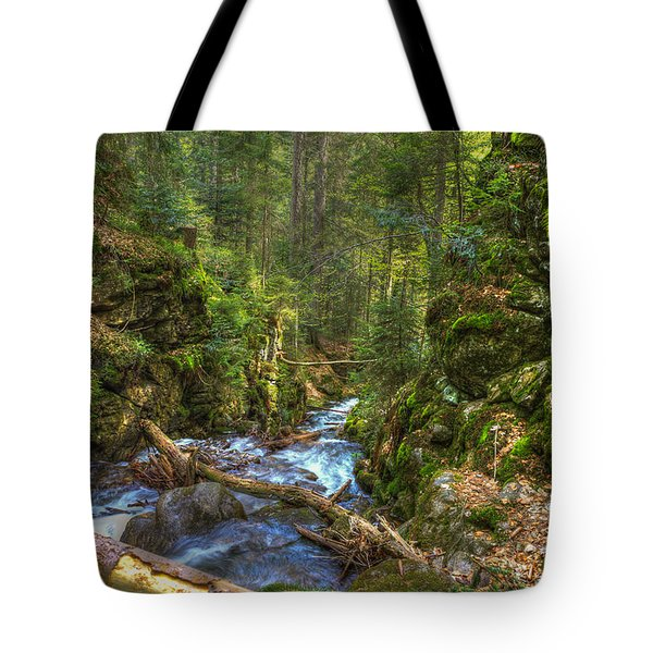 Looking Down The Gorge Tote Bag