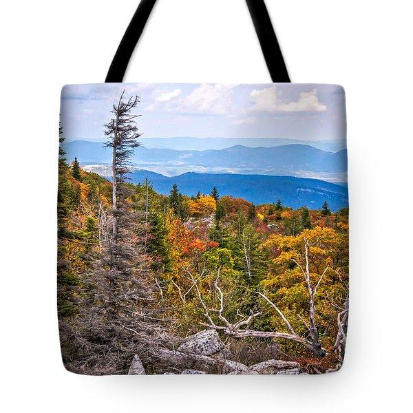 Looking East From Bear Rocks 4290c Tote Bag