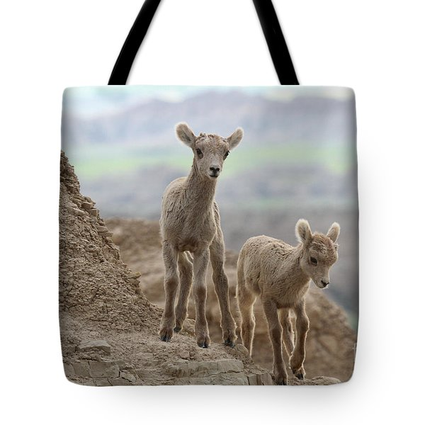 Looking For A Way Down Tote Bag