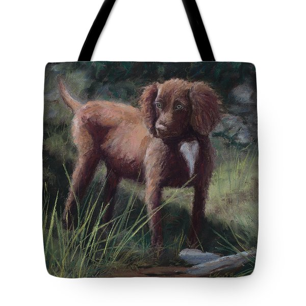 Looking For Adventure Tote Bag by Mary Benke