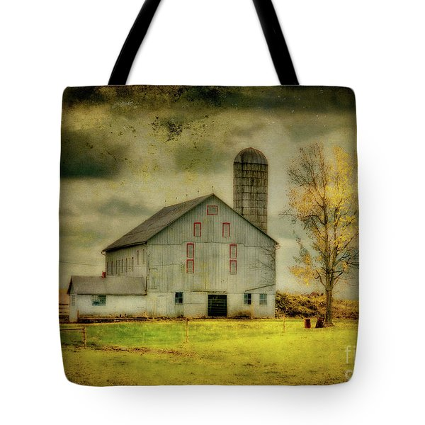 Looking For Dorothy Tote Bag