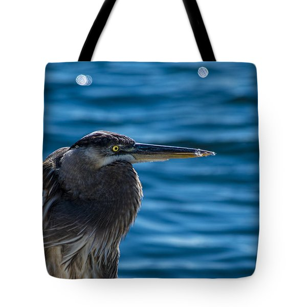 Looking For Lunch Tote Bag by Marvin Spates