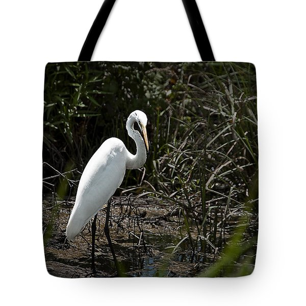Tote Bag featuring the photograph Looking For Lunch by Tamyra Ayles