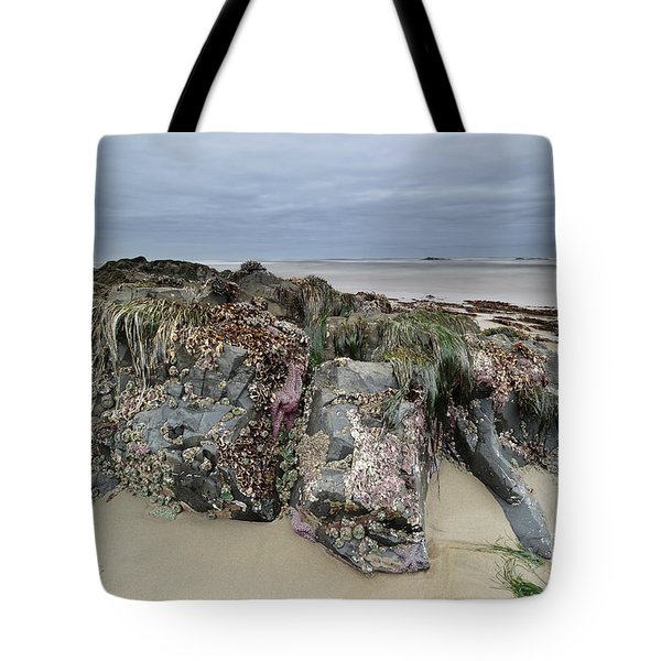 Looking For Sea Creatures Tote Bag