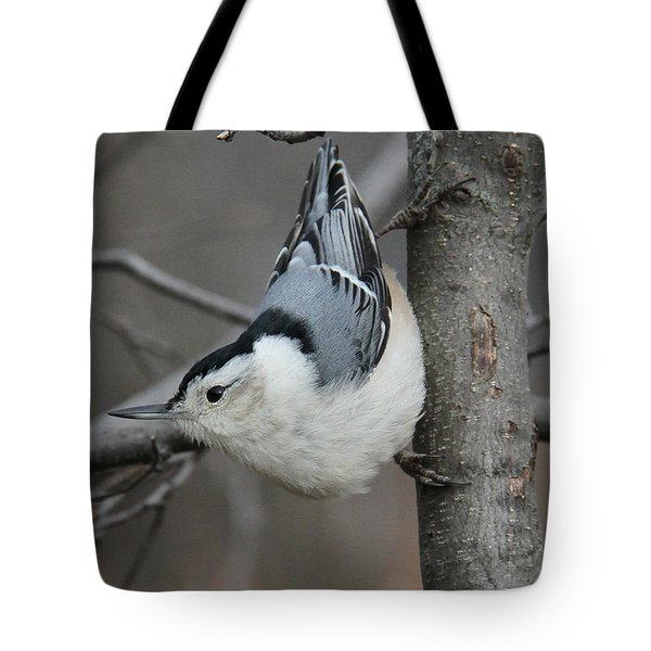 Looking For Seeds Tote Bag