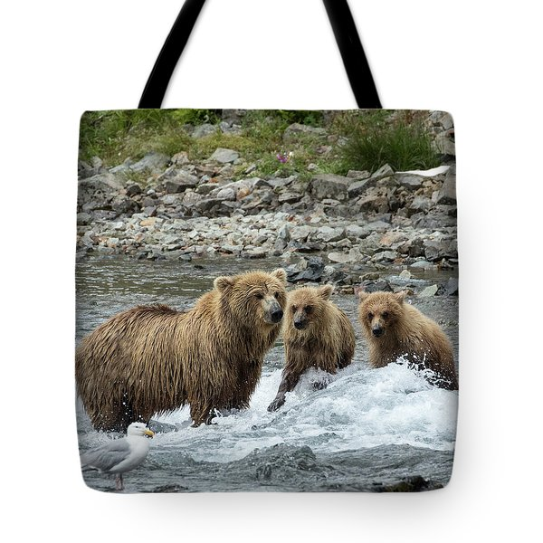 Tote Bag featuring the photograph Looking For Sockeye Salmon by Cheryl Strahl