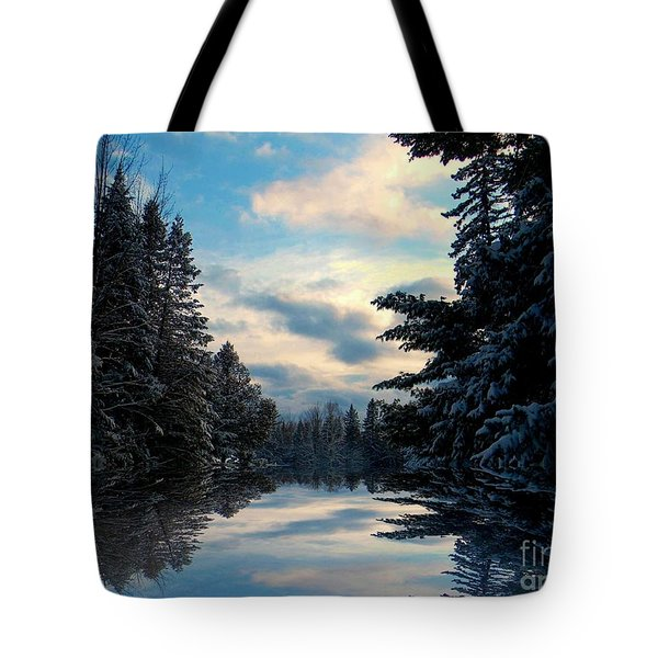 Looking Glass Tote Bag by Elfriede Fulda