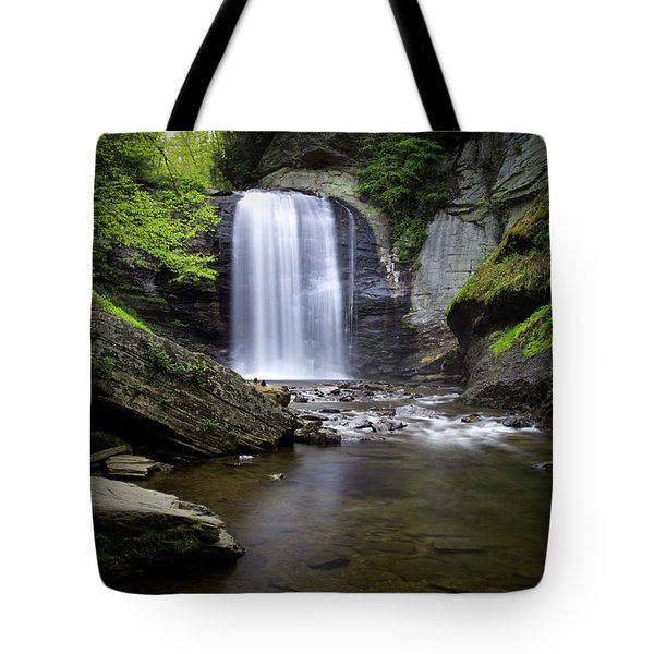 Looking Glass No. 11 Tote Bag